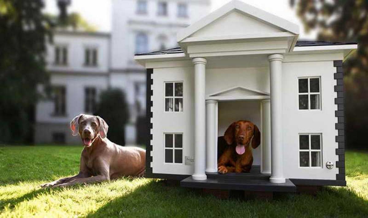 Ferplast Dogvilla, miglior cuccia per cani 2021