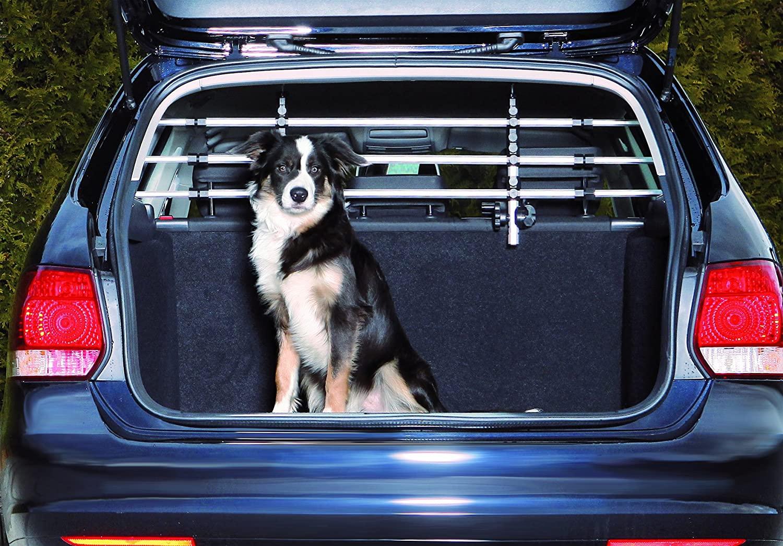 Miglior divisorio auto per cani 2021